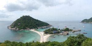 PLM islands